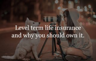 Level term life insurance policy